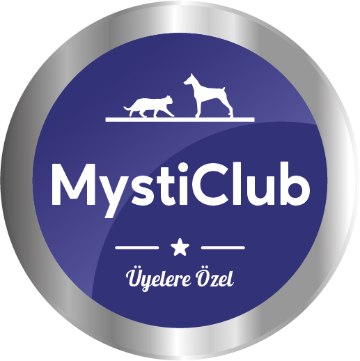 Mystic Club Logo